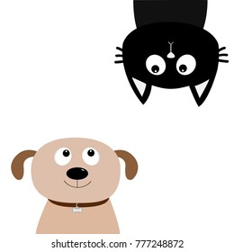 Dog Cat upside down. Pet adoption. Adopt me. Dont buy. Puppy pooch kitty cat looking up. Flat design. Help homeless animal concept. White background. Isolated. Vector illustration