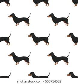 Dog collection Dachshund Seamless pattern