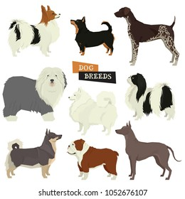 Dog collection Geometric style Vector set 9 breeds of dogs Isolated objects