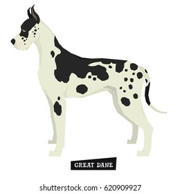 Dog collection Great Dane Geometric style Isolated object