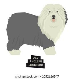 Dog collection Old English Sheepdog Geometric style Isolated object