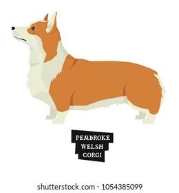 Dog collection Pembroke Welsh Corgi Geometric style Isolated object