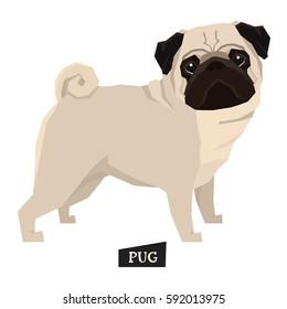 Dog collection Pug Geometric style
