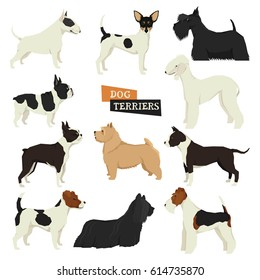 Dog collection Terriers Geometric style