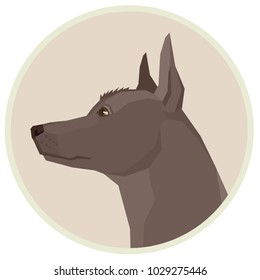 Dog collection Xoloitzcuintli Mexican Hairless Dog Geometric style Avatar icon round