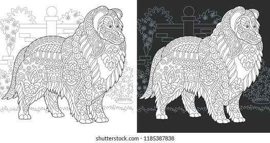 Dog. Coloring Page. Coloring Book. Colouring picture with rough collie drawn in zentangle style. Antistress freehand sketch drawing. Vector illustration.