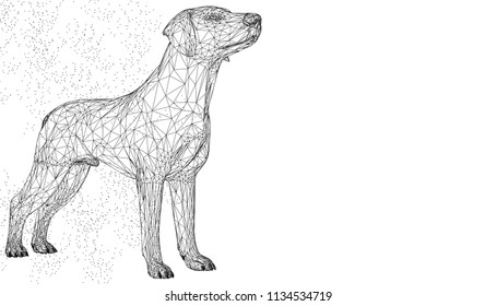 Dog cute 3d vector illustration animal. Abstract wirframe polygon triangle geometric background. Low poly blue line mesh futuristic shape. Space dot creative concept sketch. Funny doggy.