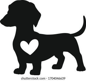 Dog, Daschund heart, cute dog, isolated on white background. Vector art.