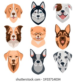 Dog different breeds head icons. Cartoon dog faces set. Vector illustration isolated on white. Doggy different breeds heads.