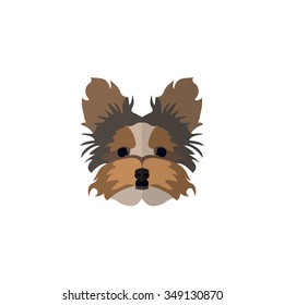 Dog Face in Flat style ( Yorkshire Terrier )