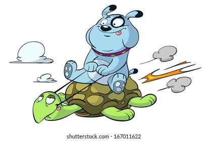 dog flying on turtle