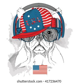 Dog in the glasses, headphones and hip-hop hat with print of USA. Vector illustration.