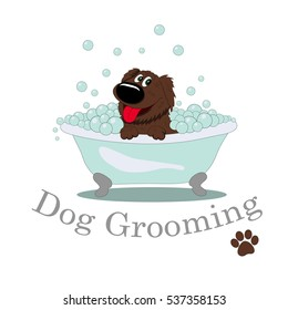 Dog Grooming in bath with bubbles.