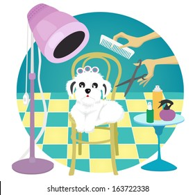 Dog in a grooming salon.