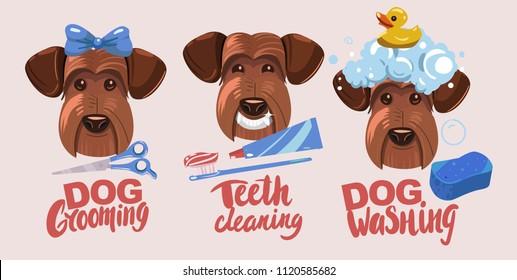 Dog grooming. Teeth clearning, dog washing. Set of vector cartoon objects.