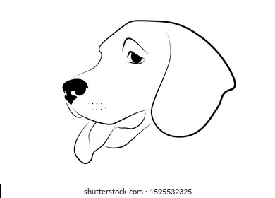 Dog head. Black linear sketch on white background. Vector illustration