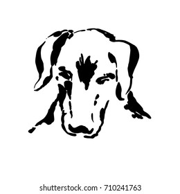 Dog head freehand drawing. Ink brush sketch.