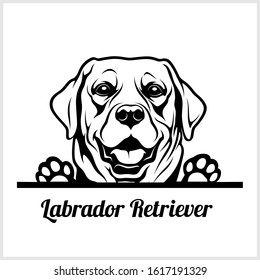 dog head, Labrador Retriever breed, black and white illustration
