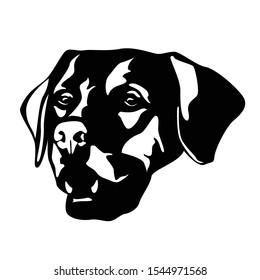 Dog head logo illustration vector. dog silhouette art.