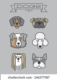 Dog heads. Isolated. doberman, pug, australian shepherd, poodle, shih tzu, french bulldog