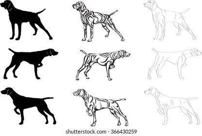dog, dog, hunting, rock, silhouette, vector, symbol, line, eye, graphic, head, decorative, animal, image, isolated, illustration, sign, paws, favorite, mammal, muzzle, nose, drawing