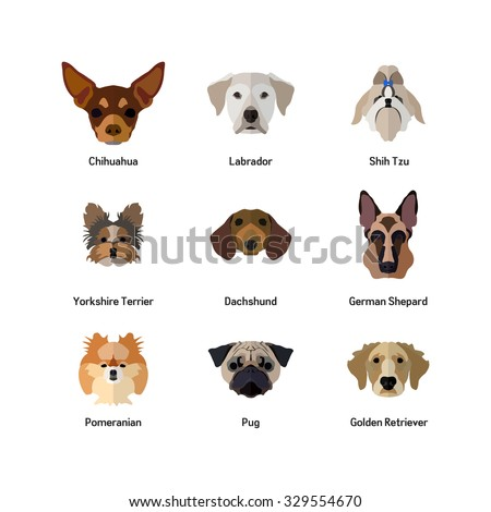 Dog Icon Flat Style Golden Retriever Stock Vector Royalty Free