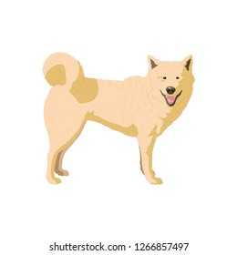 Dog icon vector symbol isolated. Vector illustration. Vector icon illustration isolated on white background.