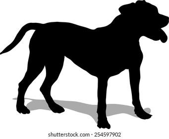 Dog illustration, pit bull - black silhouette