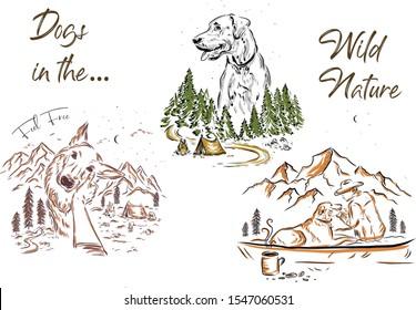 Dog Illustrations Set. Vector Set of Dogs. Nature Illustration.Hand Drawn line set