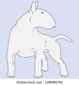 Вullterrier dog - isolated vector illustration. Outline of white fighting dog. Stencil of bull terrier for tattoo. Flat design, vector illustration, vector.