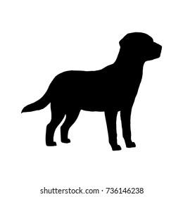 Dog labrador silhouette. Hand drawn image. Black white icon. Vector illustration. Logo desing
