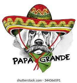 Dog with a mustache in Mexico sombrero and cravat. The text label on Spanish is Big Daddy. Vector illustration.