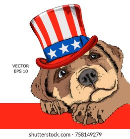 A dog  in old American hat with a flag. National Symbols of the USA. Vector illustration