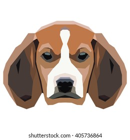 Dog on a white background. Vector.