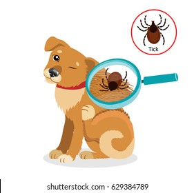 Dog Parasites. Tick On Cat In The Fur As A Close Up Magnification Vector. Spread Of Infection. Pet Veterinary Medicine Vector.