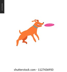 Dog in the park - flat vector concept illustration of an orange brownish dog with blue collar jumping in the air trying to catch a pink frisbee