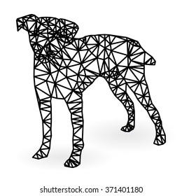 Dog polygonal style