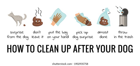 Dog poo clean up steps infographic set. Vector poster about hygiene animal, toilet cleaning information after your dog. Pick up poo after pets, picking waste in canine bag and throw in the trash