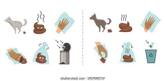 Dog poo clean up steps, infographic set. Picking waste in canine bag and throw in the trash. Vector poster about hygiene animal, toilet cleaning information after your dog step by step