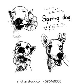 Dog portrait with a flower, drawing ink on a white background. Creative set of vector illustrations