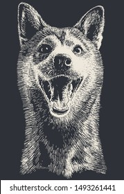 Dog portrait hand drawn vector illustration, white over black like a chalk over blackboard! Highlights only! 1 color print. Enjoy!