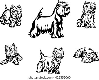 dog, purebred, breed, thoroughbred, vector, graphics, vector, image, line
