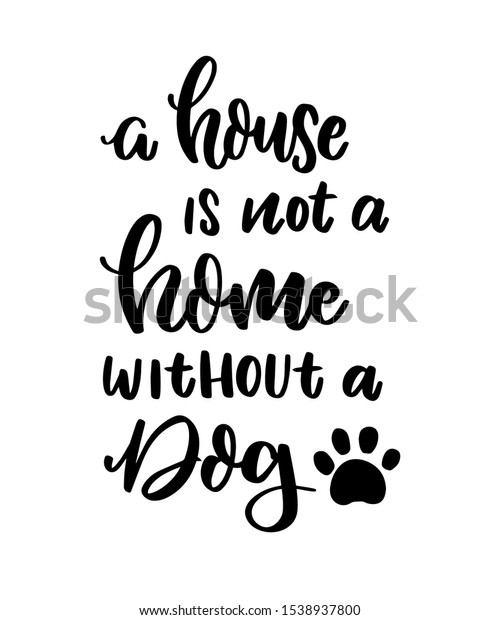 dog quotes pet quotes cat quotes stock image now