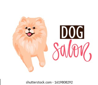 Dog salon, Pet grooming logo design template. Salon for animals with cute Pomeranian Spitz puppy isolated on white background. Vector stock illustration in flat cartoon style.
