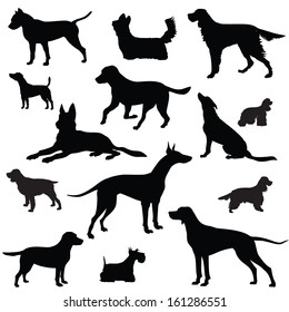 Dog set. Collection of vector silhouette