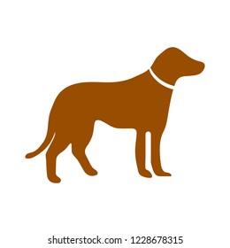 Dog sign icon. Pets symbol