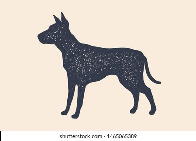 Dog, silhouette. Concept design of domestic animals - dog, side view profile. Isolated black silhouette dog on white background. Vintage retro print, poster, icon. Vector Illustration