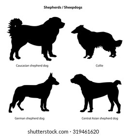 Dog silhouette icon set. Shepherd dog collection. Dogs isolated.