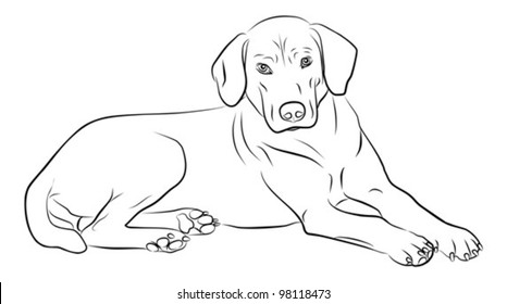 dog silhouette isolated on white background - freehand, vector illustration