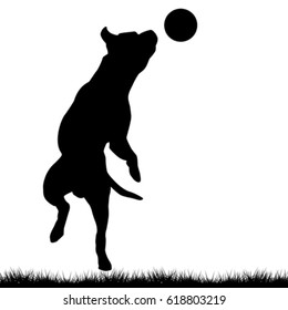 Dog silhouette playing with ball